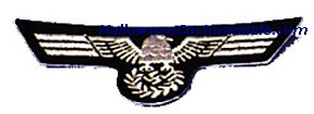 EAGLE PATCH - REGULAR SIZE