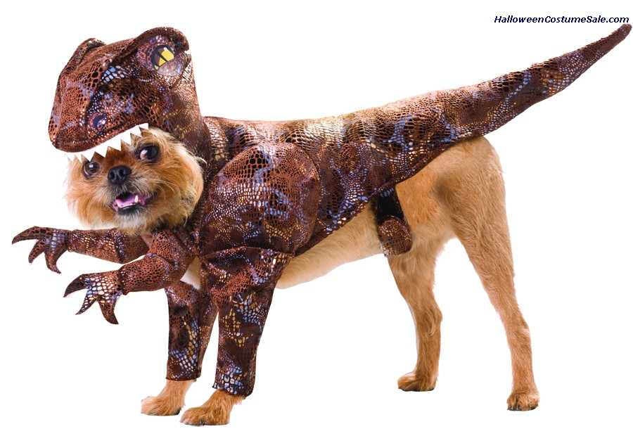 RAPTOR PET ANIMAL PLANET COSTUME