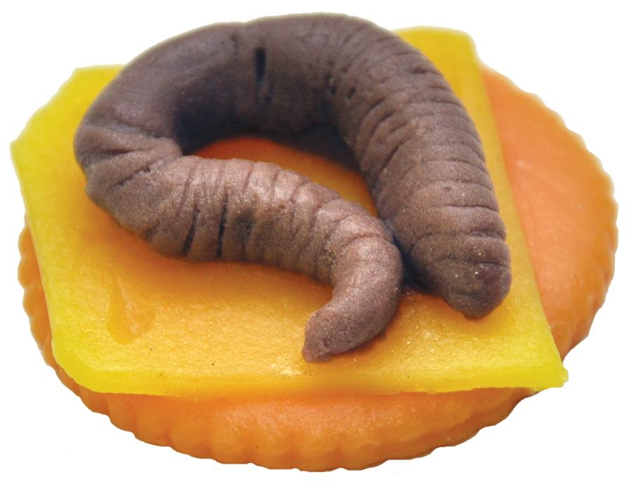 WORM FINGER FOOD