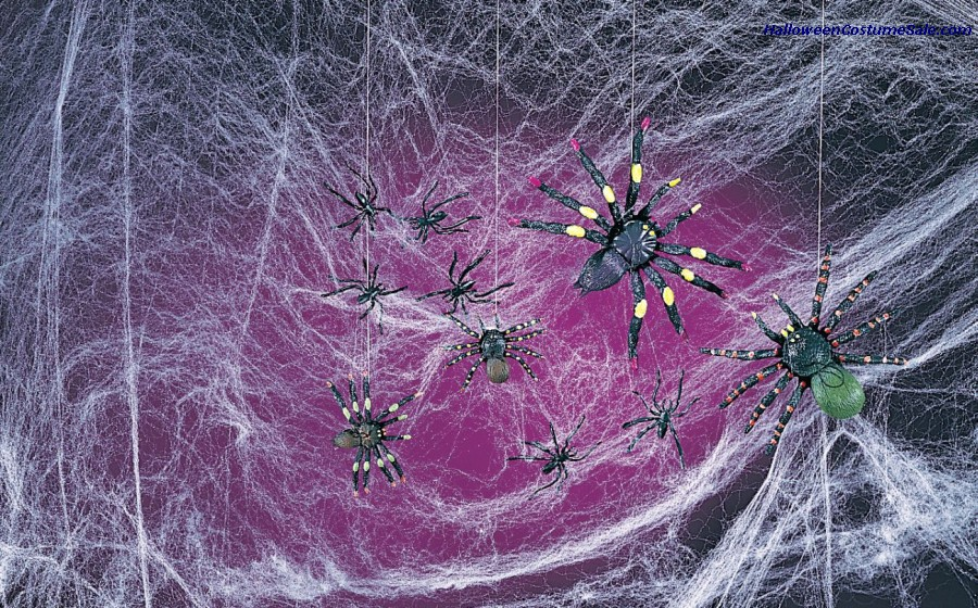 SPOOKY SPIDERS AND WEBS