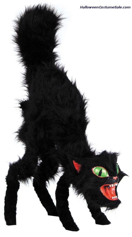 BLACK CAT, GIANT