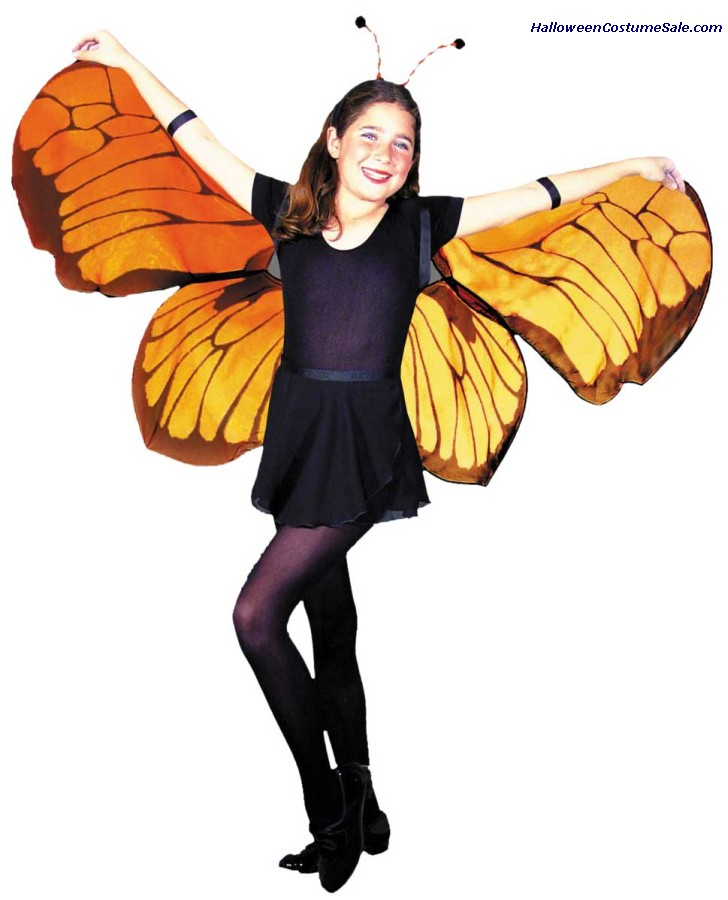 CHILDS BUTTERFLY WINGS