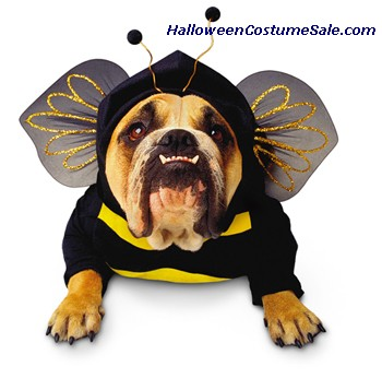 ZELDA BEE PET COSTUME