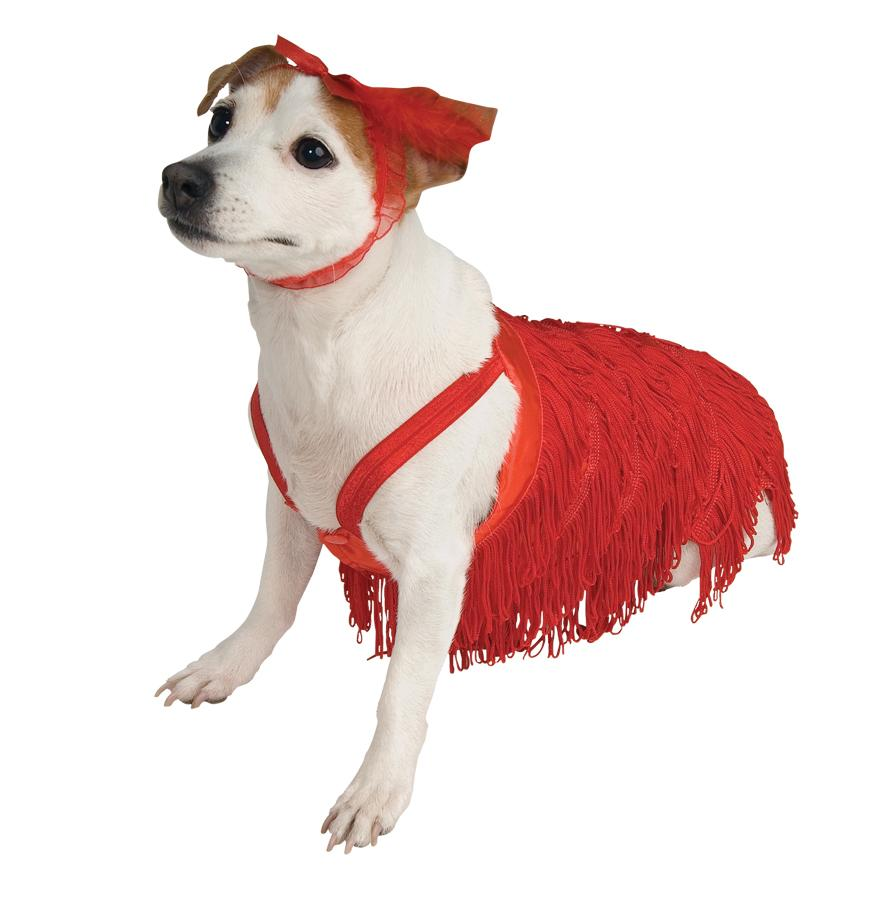 PET COSTUME FLAPPER