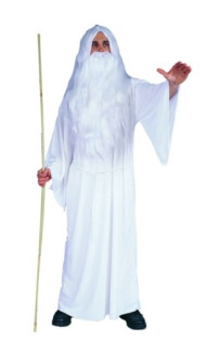 WHITE WIZARD ADULT COSTUME