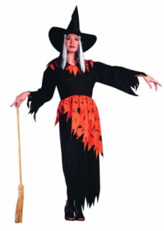 HALLOWEEN WITCH ADULT COSTUME