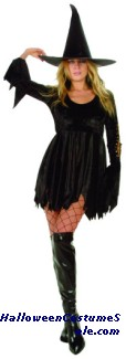 SPELL CASTER ADULT PLUS SIZE COSTUME