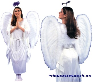 ADULT ANGEL DRESS