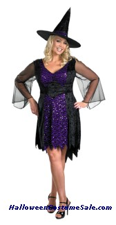BRILLIANTLY BEWITCHED ADULT PLUS SIZE COSTUME
