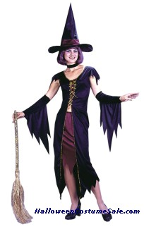 WITCHY WITCH ADULT COSTUME