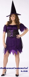 DARK WITCH ADULT COSTUME - PLUS SIZE