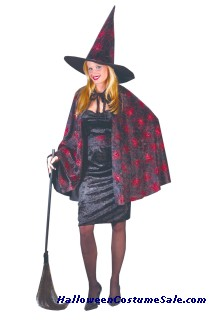 GLITTER CHIP WITCH ADULT COSTUME