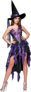 BEWITCHING BEAUTY ADULT COSTUME
