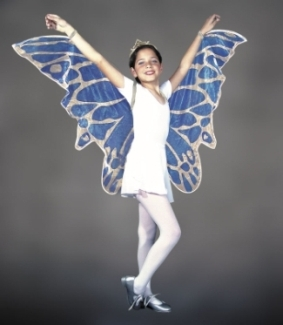CHILDS FAIRY WINGS