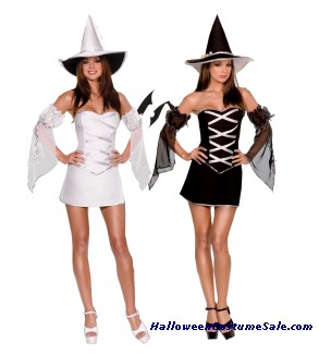 WHICH WITCH ADULT COSTUME