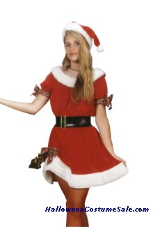 MS. SANTA ADULT COSTUME