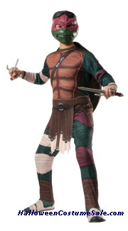 MUTANT RAPHAEL ADULT COSTUME