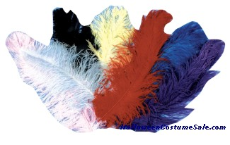 JUMBO OSTRICH PLUMES