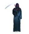 Warlord costume includes hooded collar, robe & sash.