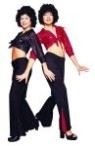 Disco girl costume includes Sequin Tie Top & Black bell bottom Pants with Sequin Inserts. Size One Fits woman size 8 -12.
