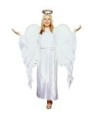 Guardian Angel costume includes graceful gown with long sleeves, tie-cord for waist, and headband. Halo included.