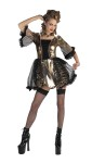 Marie Antoinette Adult Costume - Includes: Dress with metallic skirt. Fits adult sizes up to 14.