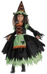 Storybook Witch Child Costume - Includes:  full-skirted dress with attached apron and matching hat. 100% polyester, dry clean only.