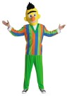 Retro Burt Adult Costume - Childhood memories will come to life when youre wearing this Burt from Sesame Street costume. Multi-colored vertically-striped shirt, green pants and plush headpiece.