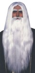 "<font class=""Apple-style-span"" face=""Arial""><span class=""Apple-style-span"" style=""font-size: small;"">The ultimate wizard look. Long haired wig and beard.</span></font>"
