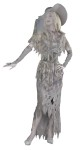 Ghostly Gal Adult Costume - Let Her Spirit Move You! This costume includes a grey tattered gown, capelet gloveletes, hat and belt. One size fits most.