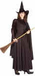 Classic Witch Adult Costume - One Witchy Woman! Hat with attached scarf, cape, top and skirt. One size fits most. Broom, stockings, and shoes not included.