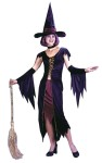 Witchy Witch Adult Costume - Includes duster halter top, skirt, choker, glovelettes and hat. Fits sizes 4-14. (Broom not included).