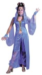 Dreamy Genie Adult Costume - Includes full length vest with arm veils and jeweled cuffs. Capri-style pantaloons with gossamer legs, belly chain, headpiece and choker. Fits sizes 4-14.