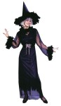 Feather Witch Adult Costume (Plus Size) - Includes sheath dress, sheer robe with feather trim drape sleeves, feather choker, waist cinch belt and witch hat with feather brim. Plus Size (16-24).