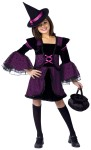 Hocus Pocus Witch Child/Teen Costume - Includes sparkling purple lace dress with layered bell sleeves and matching mini witch hat on headband.
