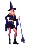 Bewitchin Babe Adult Costume - Includes: Skirt with shimmering metallic zig-zag trim, Crop Top with flowing metallic sleeves and Witch Hat. Junior sizes 0-9