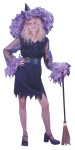 Feather Witch Teen Costume - Includes: Dress, belt and hat. One size fits Juniors 0-9.