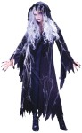"Spider Web Guaze Ghost Adult Costume - Includes: Ghost Wig, Hooded Gauze Coat, Dress with tattered edges and Spider Web detailing with spiders. Available in Child Size: <a href=""/SPIDERWEB-GAUZE-GHOST-CHILD-Grp-123FW5827.aspx"">FW5827</a>."
