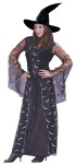 Celestial Sorceress Adult Costume - This is one Stylish Sorceress! Includes: Velvet Gown with sheer celestial print detailing, drop sleeves and hat.