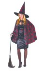 Glitter Chip Witch Adult Costume - Sparkles more than ordinary glitter…Includes: dress, belt, cape and hat.