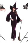 Elegant Witch Adult Costume - Beautiful velvet costume includes: velvet dress with scalloped drop sleves and pleated witch hat.