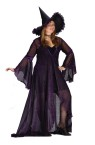 Shimmering Witch Adult Costume (Plus Size) - Elegant witch costume includes: dress, sheer rose fabric flowing coat and deluxe witch hat. Sizes 16-24. Material : Polyester.