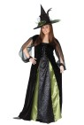 Goth Maiden Witch Adult Costume - Two tone, floor length dress with lace up front, bet shoudler drape and beautiful matching hat.