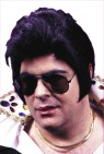 RocknRoll Elvis Wig - The mane event of the rock & roll revolution! Perfect for that Elvis costume!