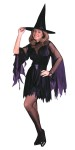 Includes zig-zag trim dress with cutaway mesh, neckline and mesh, flared sleeves, velveteen collar, witch hat, leatherette tie sash. Fits up to size 12-14.