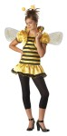 Perfect for the tween years. Honey Bee Costume includes yellow and black striped dress with attached bolero style jacket, wings, headpiece, and leggings.