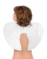 Angel Wings - Velvety soft angel wings.