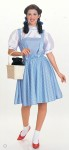 Costume includes: a polyester gingham print dress with an attached white blouse.