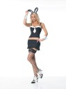 Includes: underwire pinstripe top, gartered mini skirt, cuffs and matching bunny ears headpiece.  Stockings not included.